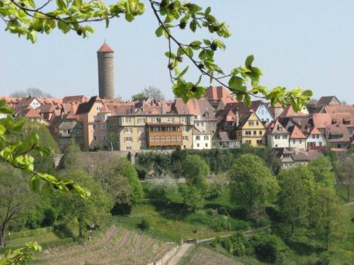 The Castle Gardens