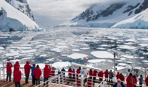 Reasons for Visiting Antarctica Soon