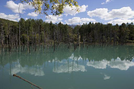 blue-pond