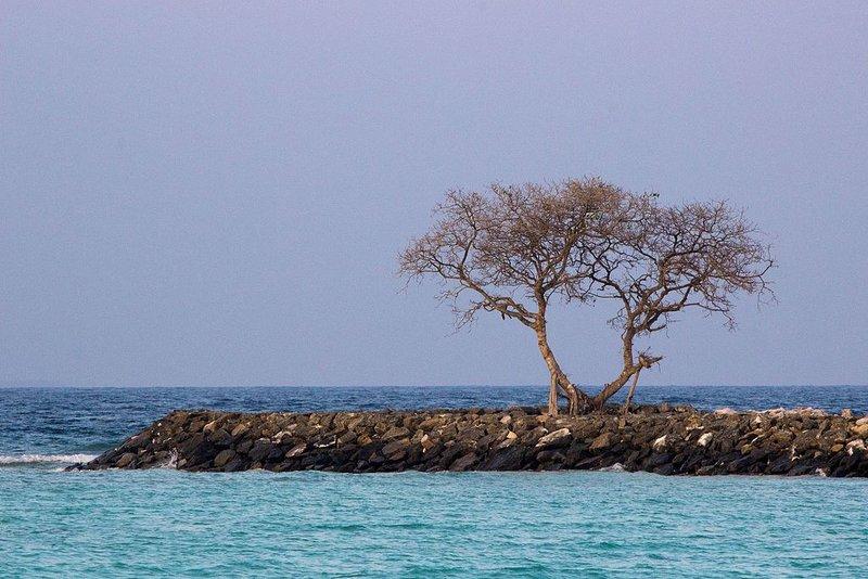 Remote Island