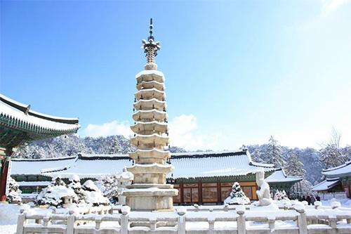 Woljeongsa Temple Stay