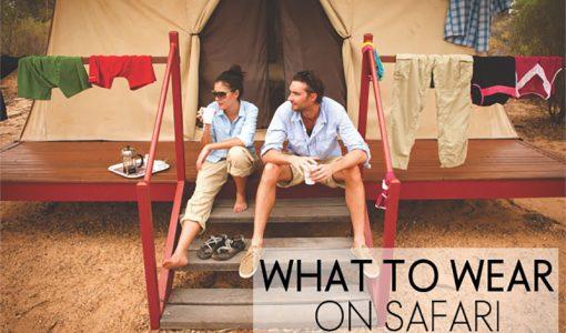 what to wear safari